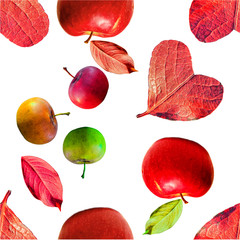 Flat lay (top view) of colorful leaves and apples pattern on white background