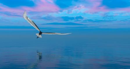 eagle flying flush