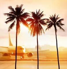 Spoed Fotobehang Oceanië palms and airport