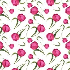 seamless pattern of pink flowers tulips on a white background