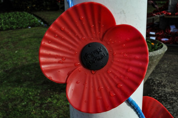 Giant Remembrance Poppy