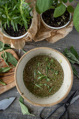 Cutting Fresh sage and rosemary herbs for bowl with broth
