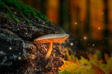 Magical forest with glowing mushrooms and fireflies at dusk