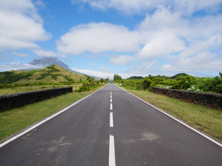 Image of road leading to a avanishing point with the mountain of Pico and vegetation