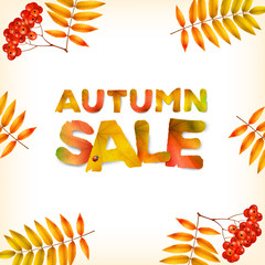 Vector autumn square background, green yellow leaves and the inscription Summer Sale, made from green leaves, isolated on white background.