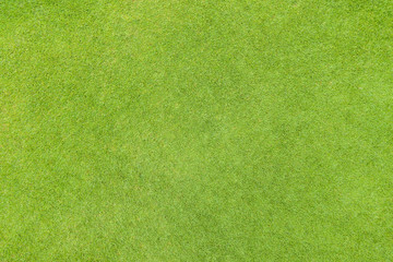 Spoed Foto op Canvas Gras Golf fairway grass texture top view