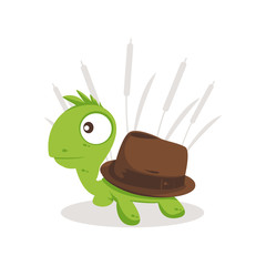 Turtle Hat illustration