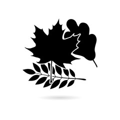 Black Autumn leaves icon or logo