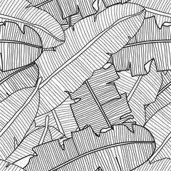 Vector tropical seamless pattern with banana leaves. Exotic plants in black and white.