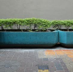 街角の風景 植物 植え込み 壁 Street corner landscape Plant wall
