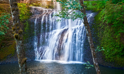 Wall Murals Waterfalls Waterfall with dancing fairy lights in enchanted forest/Glowing fairy lights around enchanted waterfall in forest