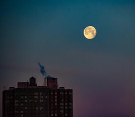 Morning Moon Set