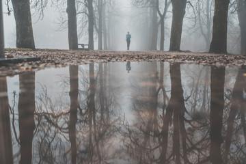 Morning run in autumn misty park. sport motivation photo