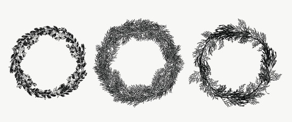 Hand drawn collection of evergreen wreath in vintage style. Botanical illustration for holiday decor.
