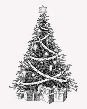 Christmas tree vintage illustation. Hand drawn holiday decor element.