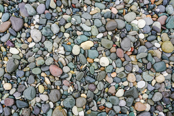A lot of coloured pebbles on a shore for a background of natural material