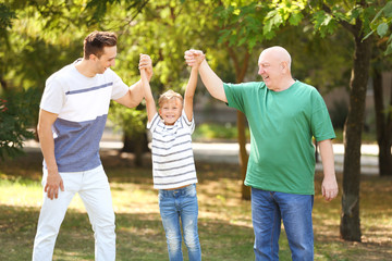 Man with son and elderly father in park on sunny day