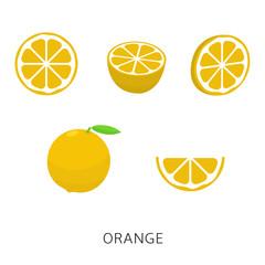 Orange set vector illustration