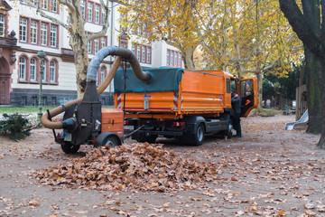 Straßenreinigung beim Sammeln von Herbstlaub