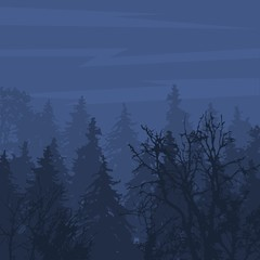 Foggy forest in gloomy landscape natural outdoor pine environment wood vector illustration.
