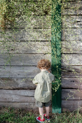 Portrait of a young boy from behind with blond, curly hair wearing a green shirt and pants, standing alone at a wooden garden wall with hanging vines at sunset