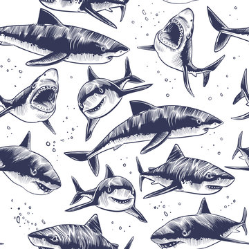 Sharks seamless pattern. Hand drawn underwater sea fish nautical japanese background. Illustration of underwater shark in sea, marine wildlife