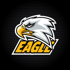 Eagle Head from side. Can be used for club or team logo. Vector graphic.