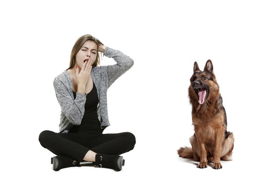 The yawning bored woman and her dog over white background. Shetland Sheepdog sitting in front of a white studio background. The concept of humans and animals same emotions