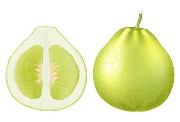 Fresh green pomelo. Vector illustration.