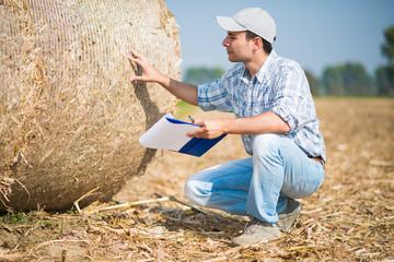 Farmer checking a hay bale quality