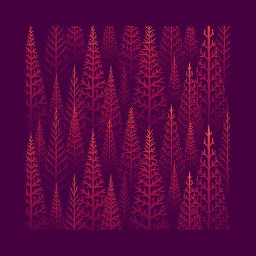Pine tree forest illustration