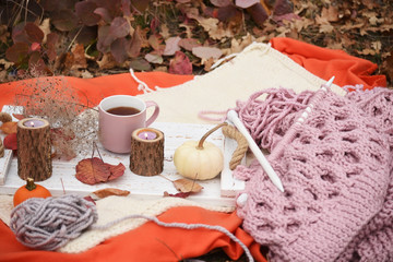 Autumn still life with knitting in the autumn garden. Rough knitting and knitting needles.