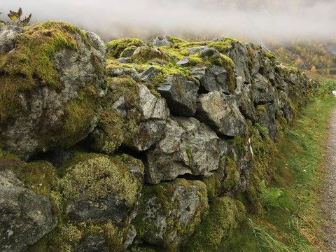 Mauer mit Moos