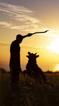 silhouette of a young man playing with a dog in a field at sunset, boy throwing a wooden stick on nature