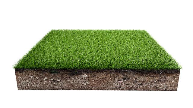 Green grass land piece