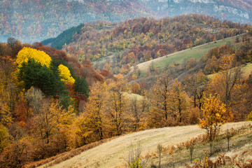 Amazing autumn view of a mountain meadow in the central Balkan Mountains, Bulgaria