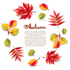 Autumn background with freehand lettering and colorful fall leaves with shadows.