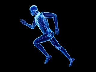 3d rendered illustration of a joggers skeleton