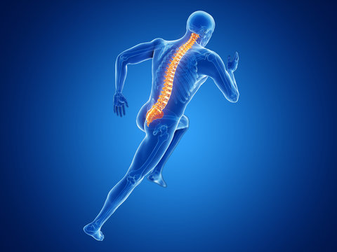 3d rendered illustration of a joggers spine