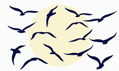 gulls. flocks of birds. silhouettes of seagulls.