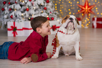 Christmas Holidays. handsome boy enjoy life time with his friend english bulldog close to new year tree with plenty presents around.Magic Christmas.