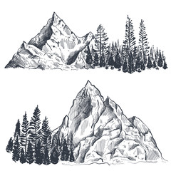 Vector set of hand drawn graphic mountain ranges with pine forest