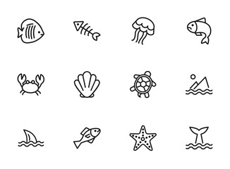 Marine life icon. Set of line icons on white background. Crab, turtle, seashell, starfish, shark fin. Sea concept. Vector illustration can be used for topics like aquarium, fauna, travel