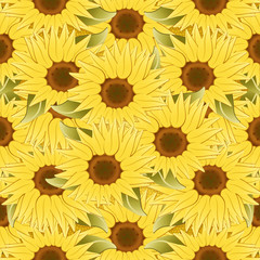 Sunflower background. Beautiful spring concept background with sunflowers flowers.