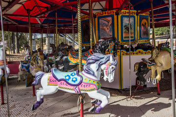 Horse On Merry Go Round Carousel