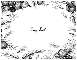 Berry Fruit, Illustration Frame of Hand Drawn Sketch of Jostaberries and Juniper Berries Isolated on White Background.