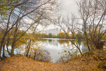 Beautiful autumn landscape with city pond.