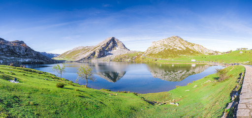 Foto auf Leinwand Reflexion Reflections on the lake Enol de Covadonga, Spain