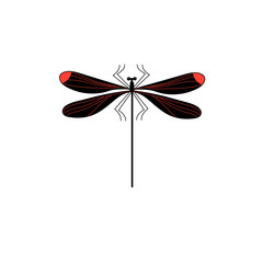 Vector symbol of isolated dragonfly sign