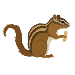 Forest Wildlife Vector animals Geometric style Chipmunk with peanut